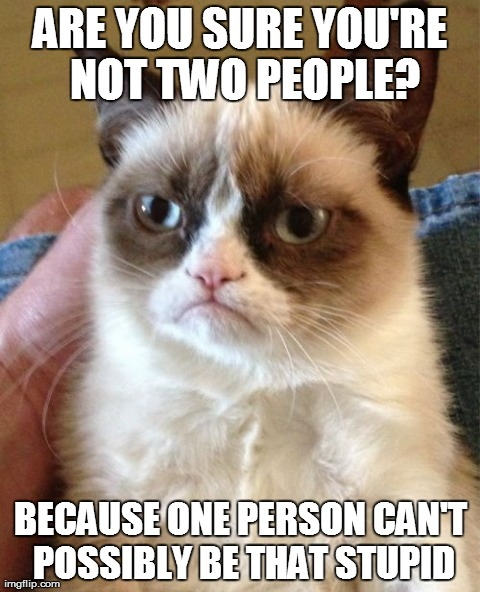 Image tagged in memes,grumpy cat | ARE YOU SURE YOU'RE NOT TWO PEOPLE? BECAUSE ONE PERSON CAN'T POSSIBLY BE THAT STUPID